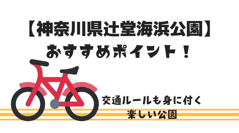 神奈川県辻堂海浜公園】のおすすめポイント!